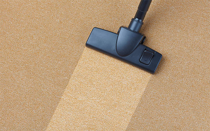 Why Do You Need To Hire A Professional Carpet Cleaner?