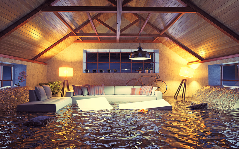 What Should I Do When My Carpet Gets Flooded?